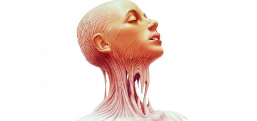 anatomy-520x245