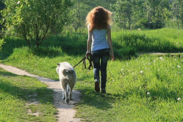 Прогуляйтесь