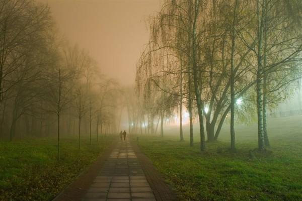 прогулка перед сном