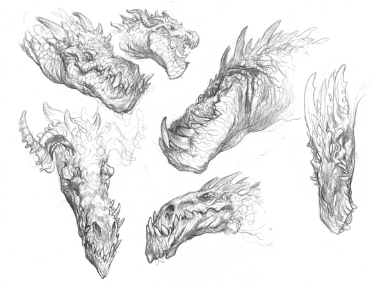 dragon-expressions