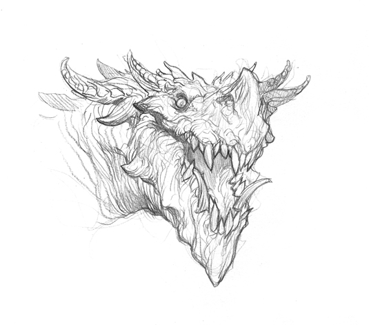 dragon-sketch