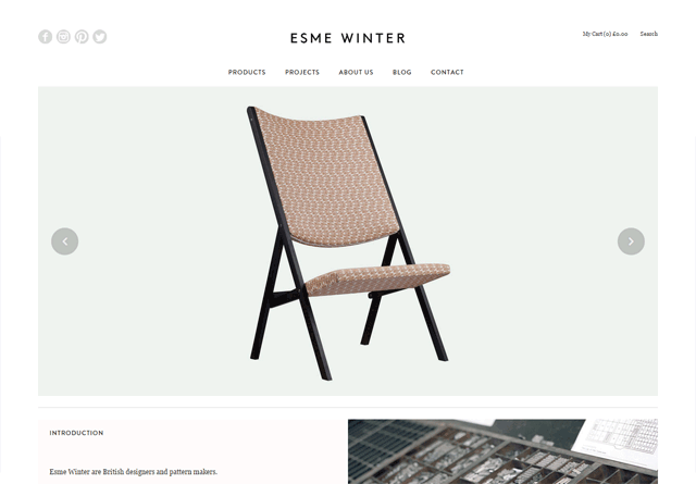 0531-48-clean-website-esmewint
