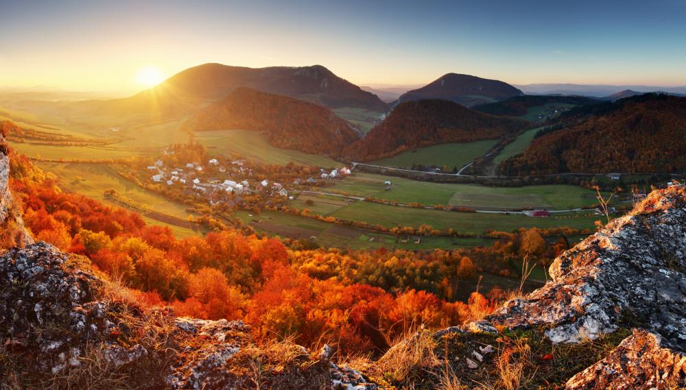 Autumn mountain forest landscape