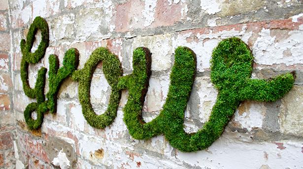 5 основных принципов эко-дизайна
