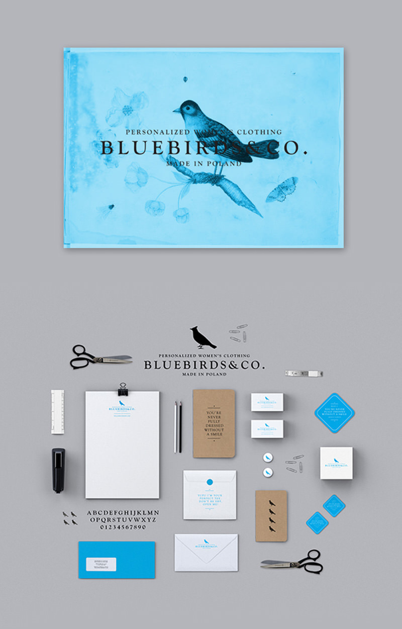 bluebirdsco