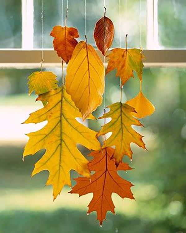 листья3