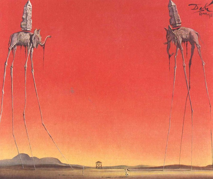 the-elephants-large