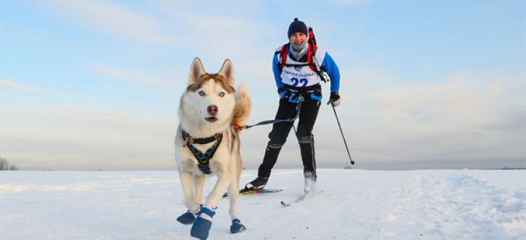 5 необычных видов зимнего активного отдыха