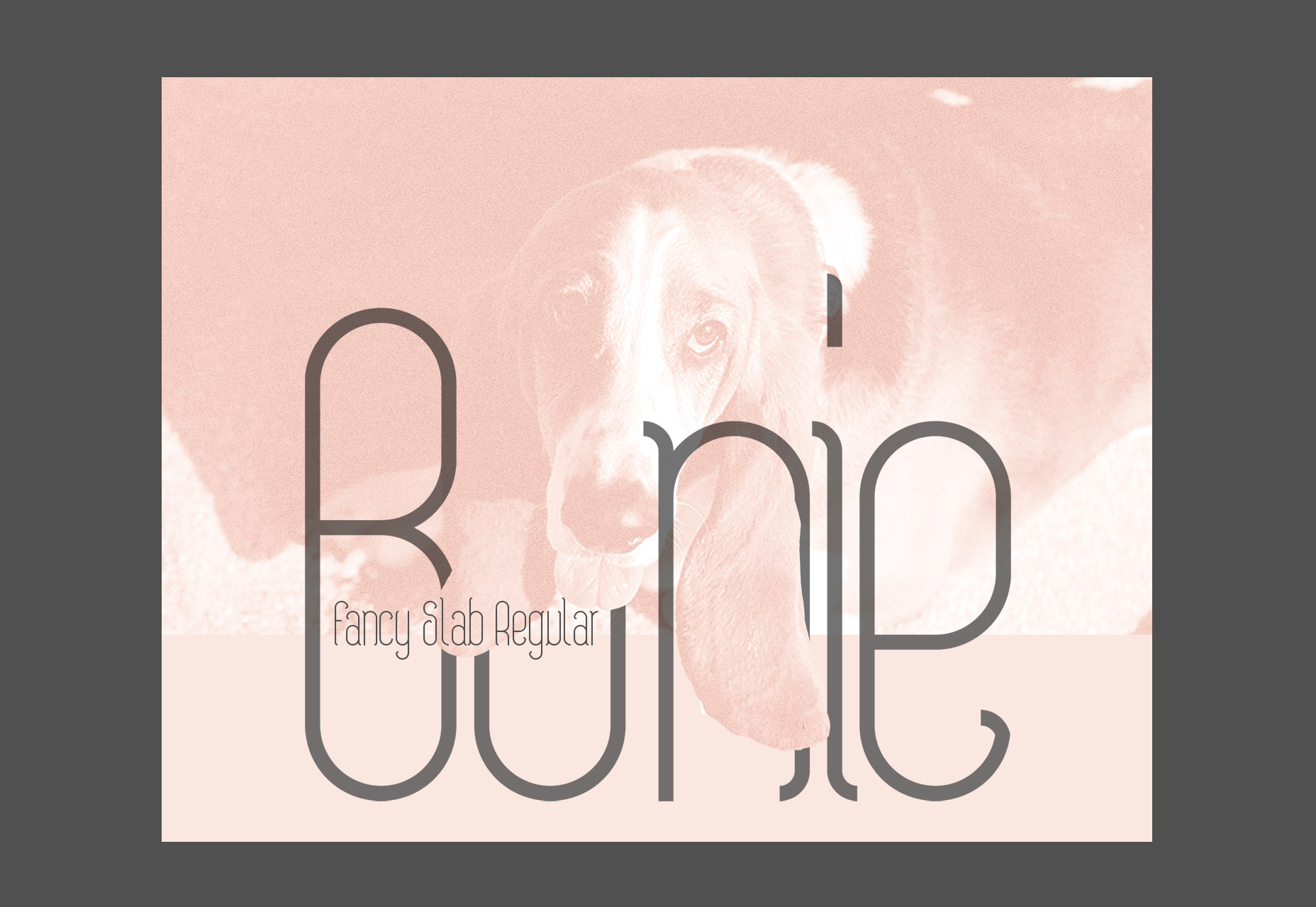 bonie-fancy-slab-regular-typeface
