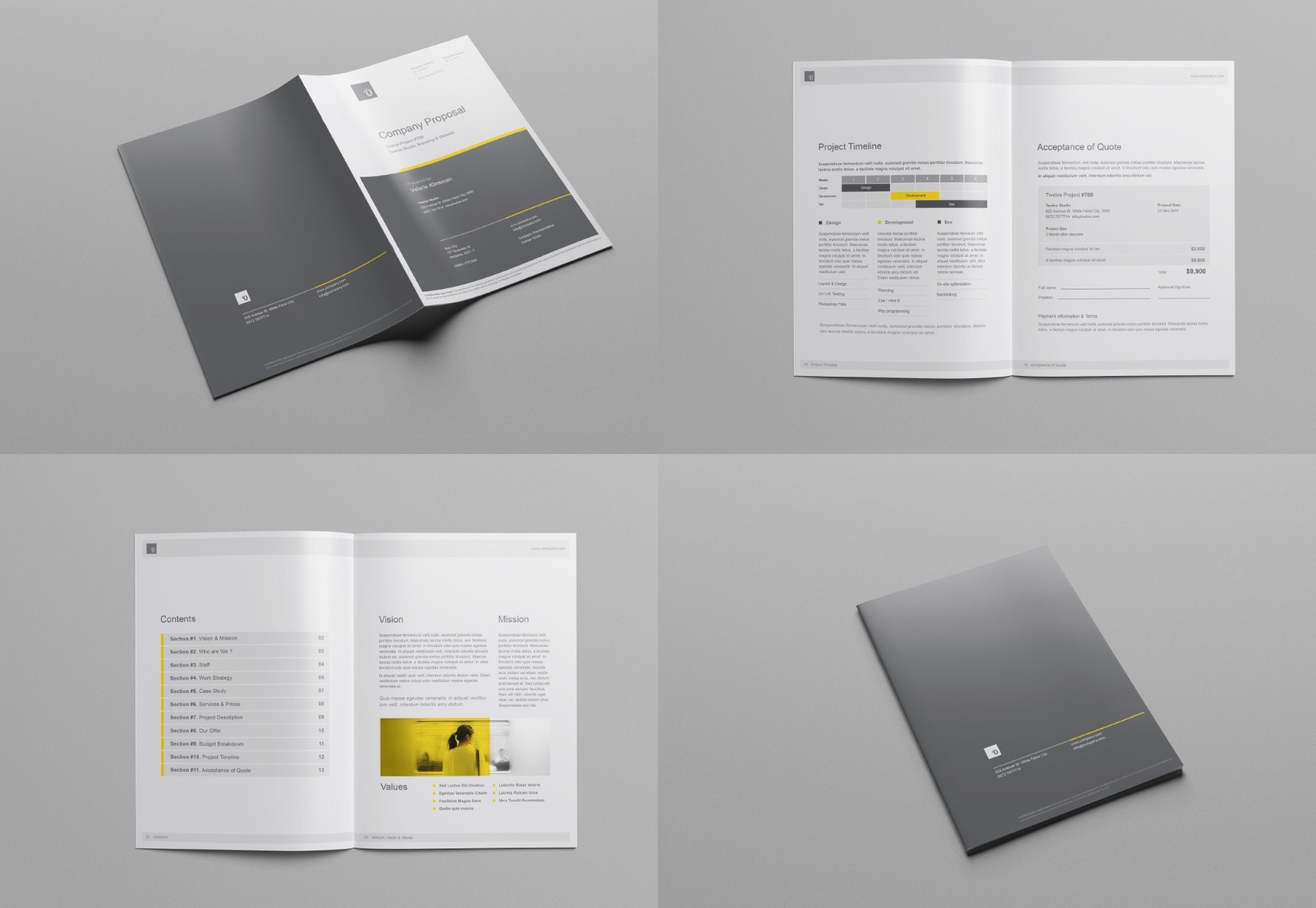 company-proposal-brochure-mockups-set