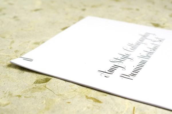 9. sovety kalligrafam kak xranit rabochie prinadlezhnosti.
