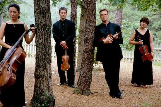 vitamin_string_quartet