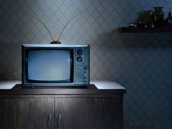 1417348576_iskusstvo-smotret-televizor-1