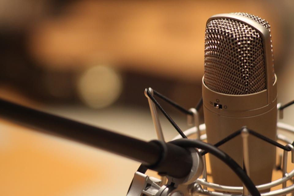Желательно приобрести студийный микрофон. Им очень комфортно пользоваться и легко настроить.