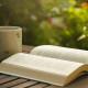 5 научно-популярных книг, которые стоит прочесть этим летом