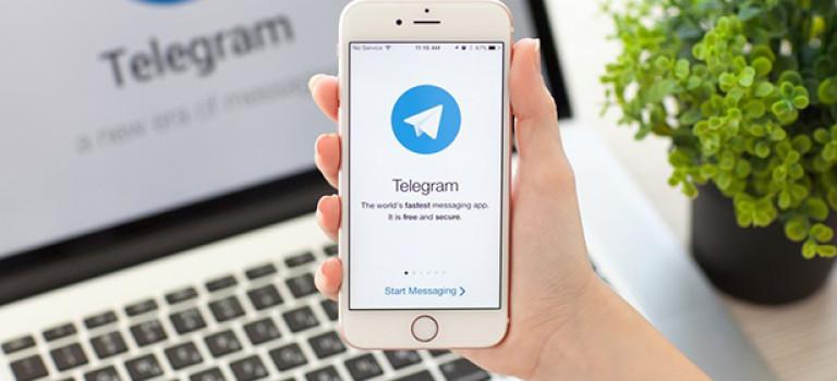 7 полезных ботов Telegram для творческих