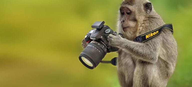 5 вопросов, которые нужно задать себе перед покупкой камеры