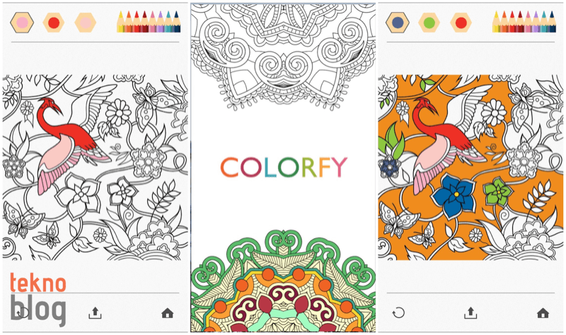 colorfy-001