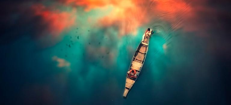 24 сильные фотографии с комплементарными цветами