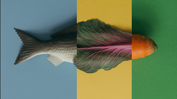Creative colorful layout made of fish and vegetables.  Food conc