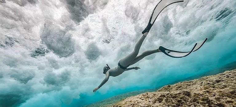 Лучшие фотографии подводного мира в 2017 году
