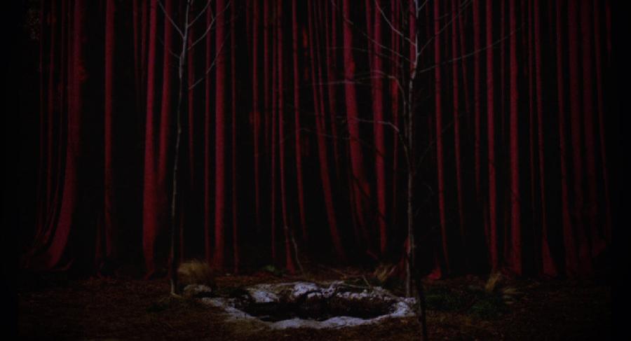 Никто и никогда не объяснит, была ли Чёрным Вигвамом красная комната на самом деле.