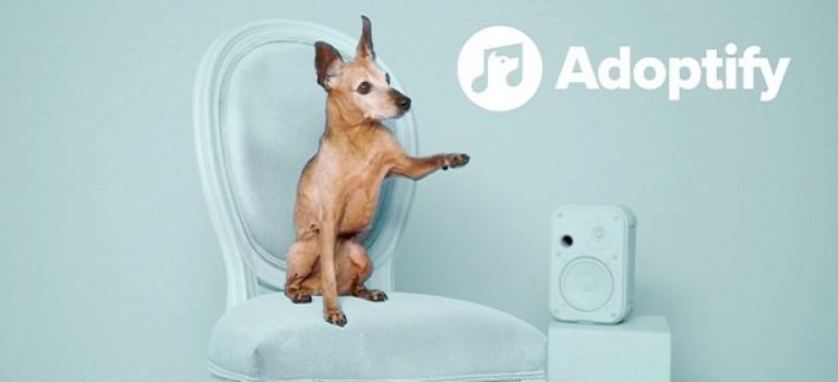 Spotify и приют для животных выпустили ролики, чтобы помочь питомцам найти хозяев