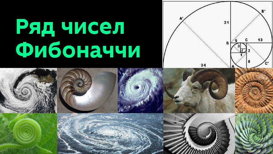 fibonacci-presentation