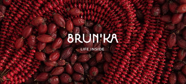 Кейс: як створювався фірмовий стиль та дизайн для бренду органічної косметики Brun'ka