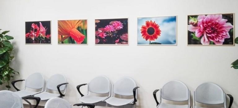 Как влияет фигуративное и абстрактное искусство на больных?
