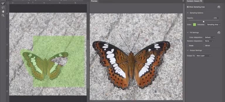 Adobe продемонстрировала новый инструмент, который войдёт в Photoshop CC 2019
