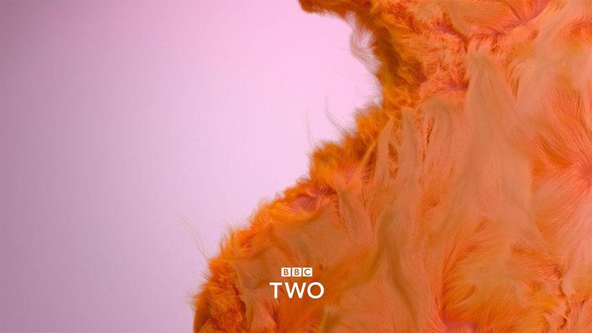 Ребрендинг BBC Two совместно с BBC Creative и Superunion